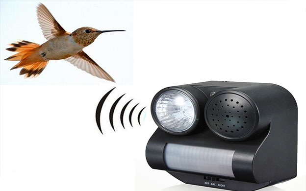 Ultrasonic option or Bird Repellent Spray