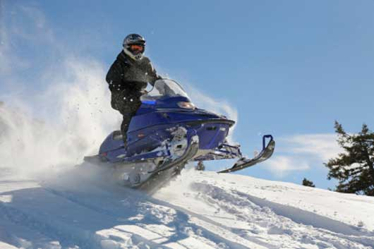 seal skin covers snowmobile happy customer review!